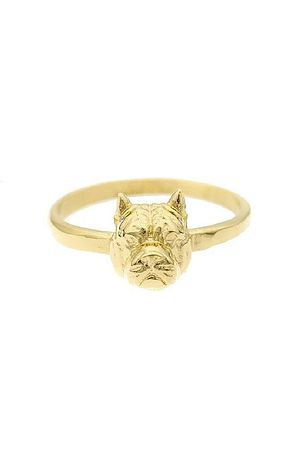 Image of The Pitbull Ring - Gold
