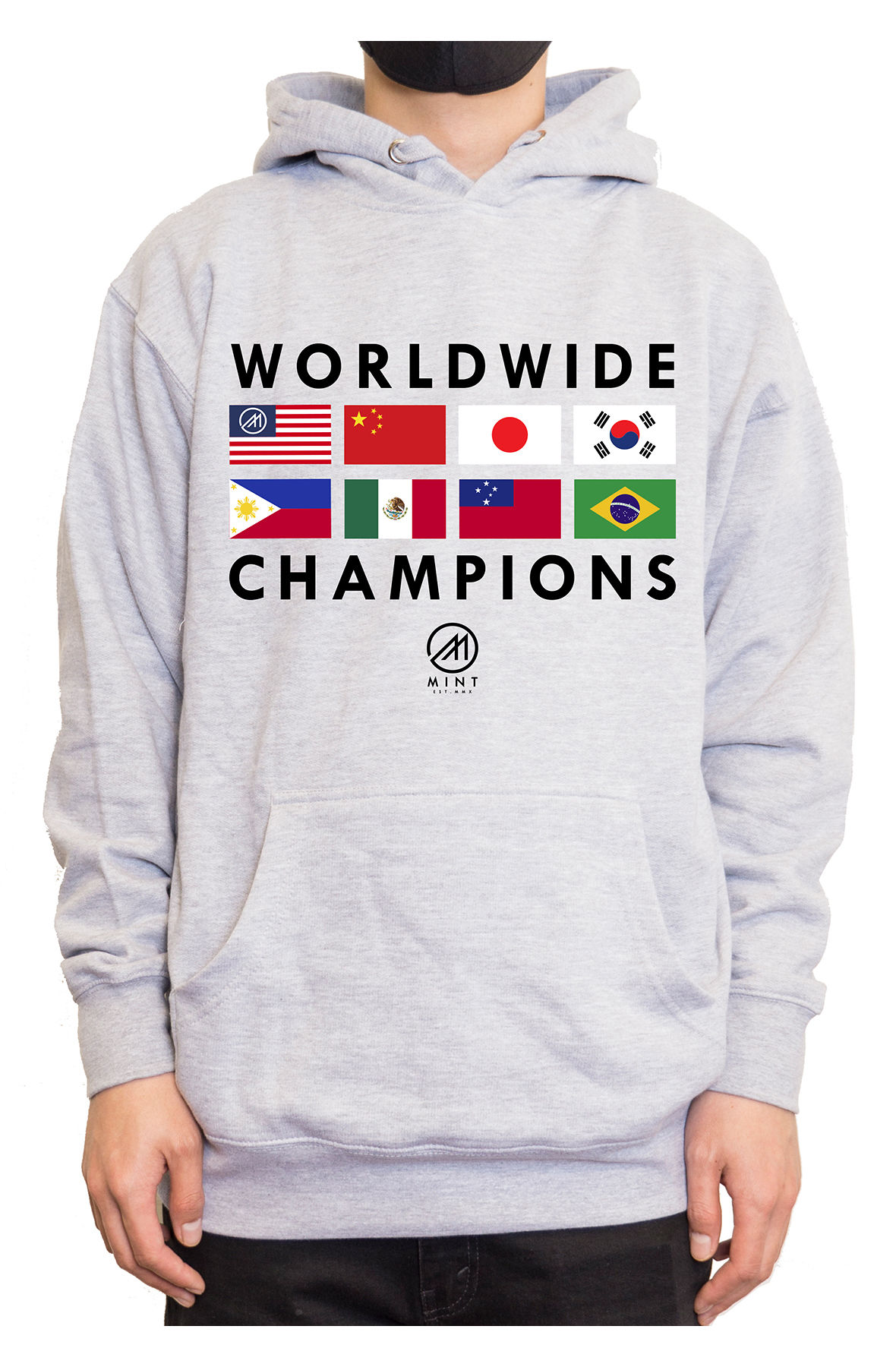 Image of The Mint Flags 2 Pullover Hoodie in Heather