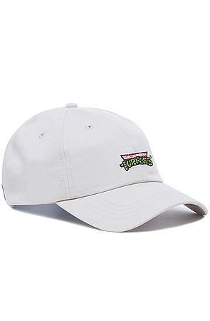 0df8246247a81 ... The Dumbgood x TMNT Dad Cap in Khaki ...