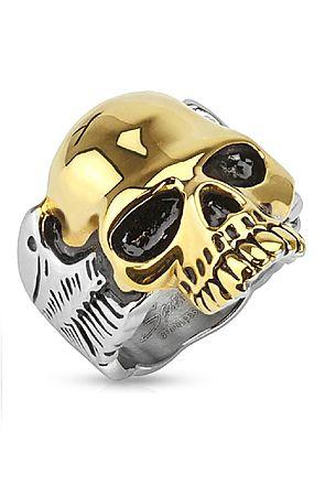 The Golden Skull Ring